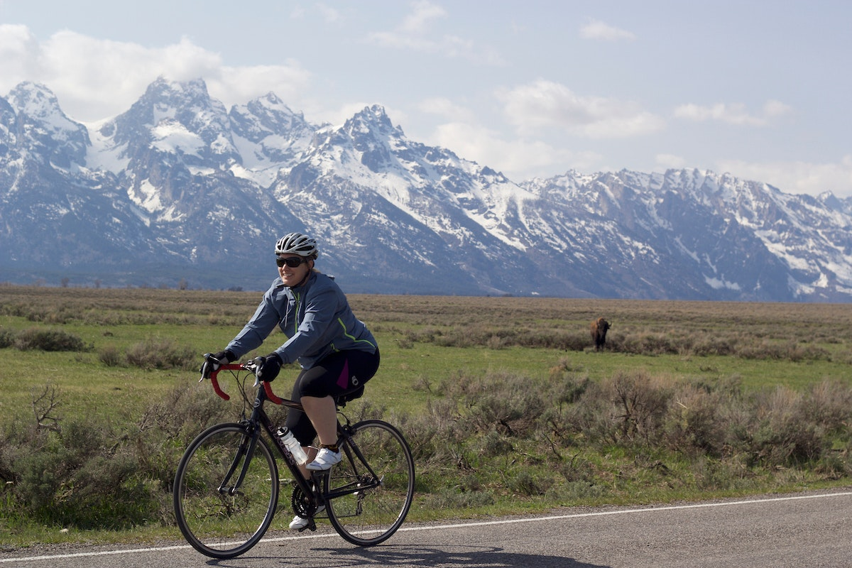Biking By Bison And Tetons
