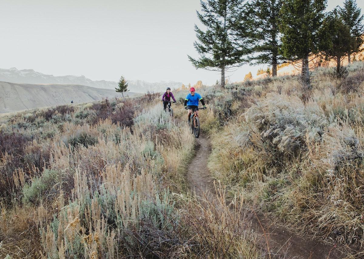 Jh Mountain Biking Trail Fall