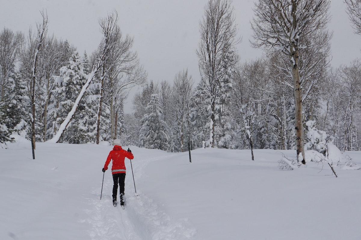 Jh Nordic Skiing Winter Single