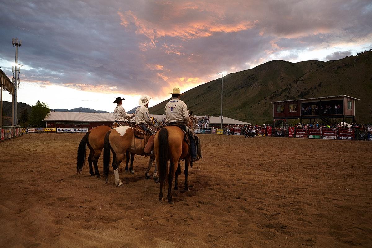 Jh Rodeo 3 Horses