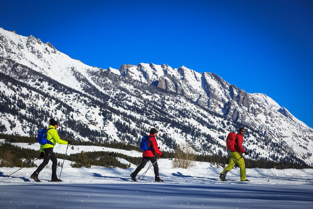 Nordic Skiing Cross Country Skiing Ski Jackson Hole Grand Teton National Park Winter Activities Wyoming Wildlife Tour National Parks Winter Yellowstone 4